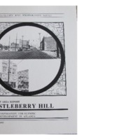 Castleberry Hill Project Area Report: Olympic Ring Neighborhoods Survey (1993)